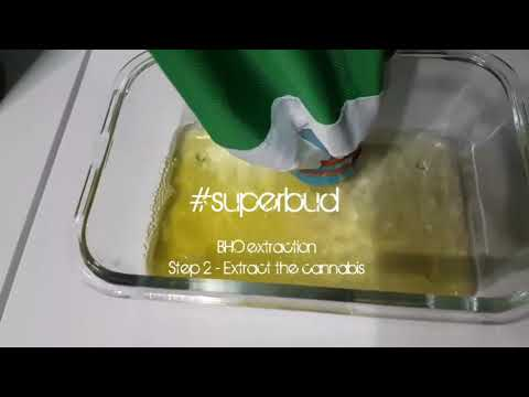 BHO Extraction, Step 2 - Extract the cannabis