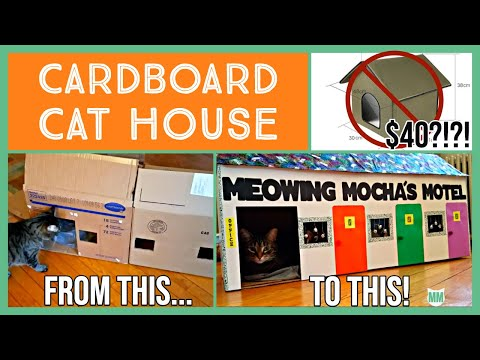 Make an Awesome Cat Motel! - DIY Cardboard Cat House