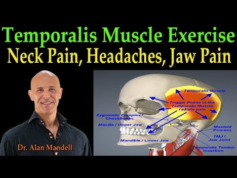 Temporalis Muscle Massage for Fast Pain Relief of Neck, Head, and Jaw  - Dr. Alan Mandell, D.C.