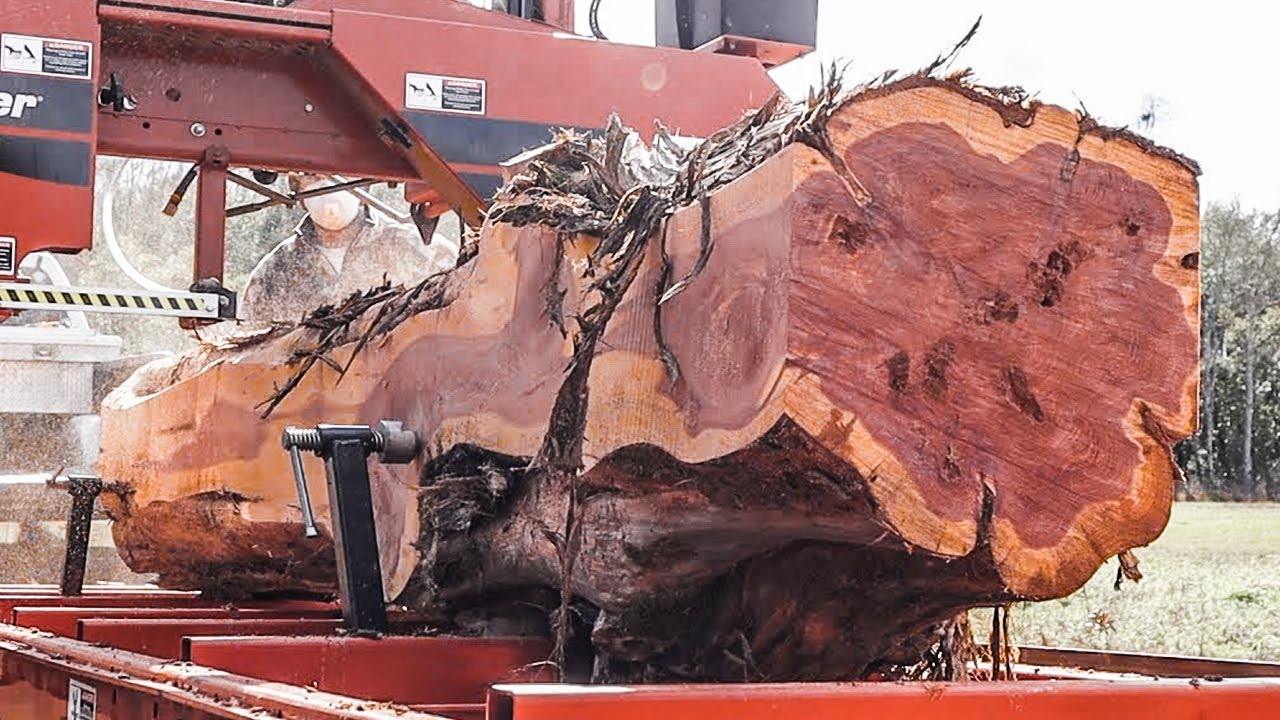 This devil wood cutting machine is INCREDIBLE. Amazing huge wood processor & wood sawmill equipment