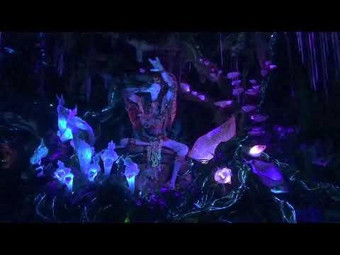 Disney World's Pandora Navi River Journey HD Low Light