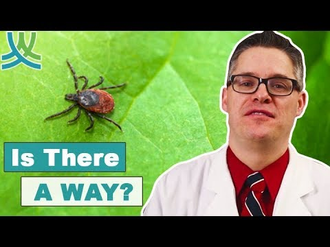 How To Cure Lyme Disease