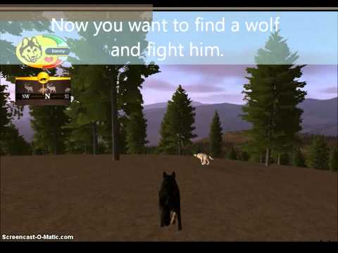 How to get a albino pup and secret den in wolfquest