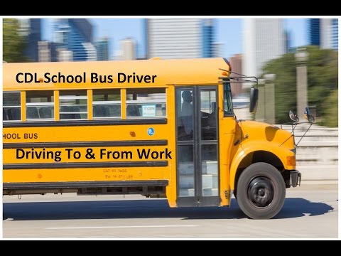 CDL Bus School Bus Driver - Driving To And From Work