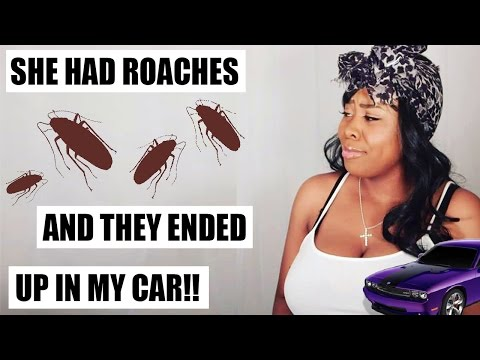STORYTIME: SHE HAD ROACHES & THEY ENDED UP IN MY CAR!!