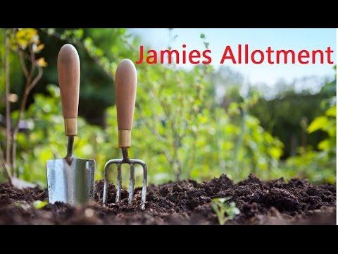 Jamies Allotment | Horse Manure | New Light | Indoor Garden Changes
