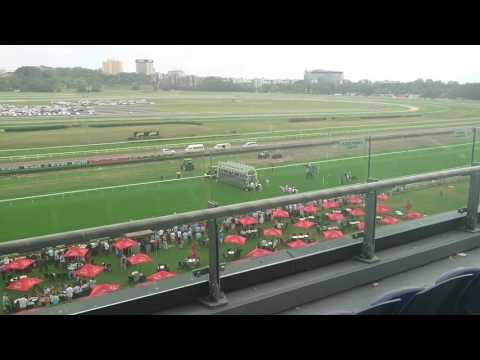 Randwick Racecourse 2