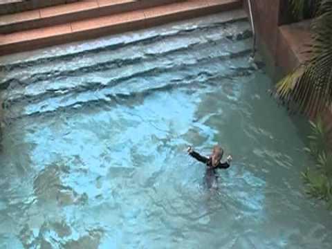 2011 Bahamas Vacation at Atlantis on Paradise Island Nassau