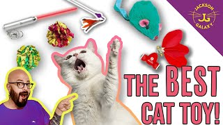 What is the best cat toy in the world? Trust me, I know!