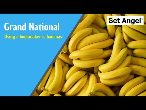 Grand National  tips - Why using a bookmaker is bananas!