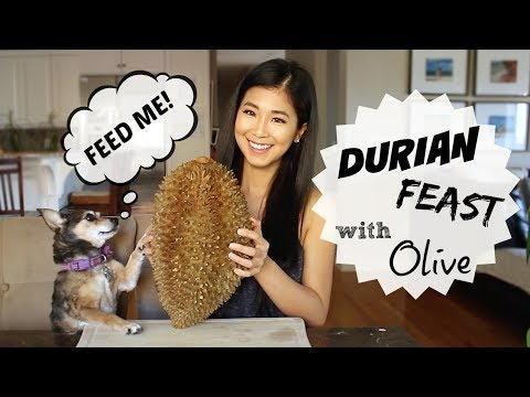 10.5 POUND Durian Feast with Olive