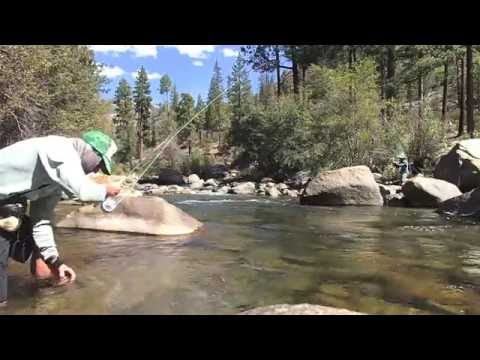 Fly Fishing The Golden Trout Wilderness