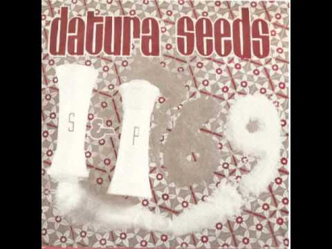 Datura Seeds - S&P '69
