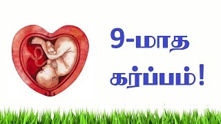 Early get pregnancy Tips for both Mens and womens (do's and