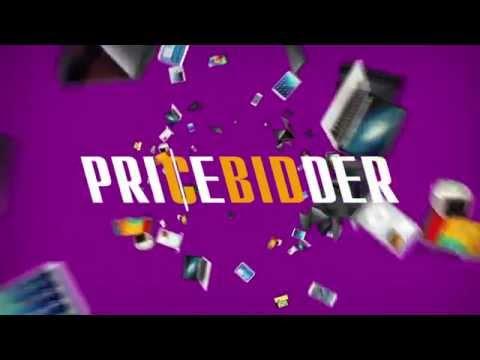 PriceBidder.com - How it Works