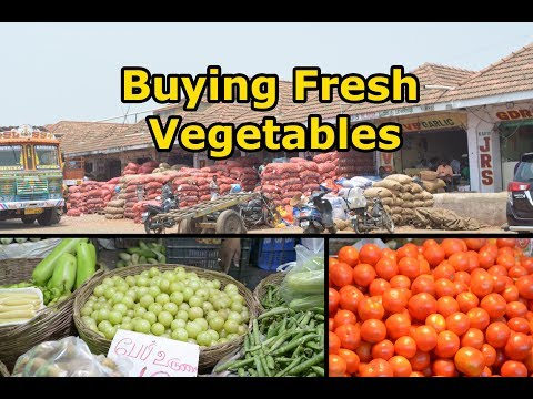 How to buy vegetables | காய்கறி வாங்குவது எப்படி | Types of vegetables in Tamil
