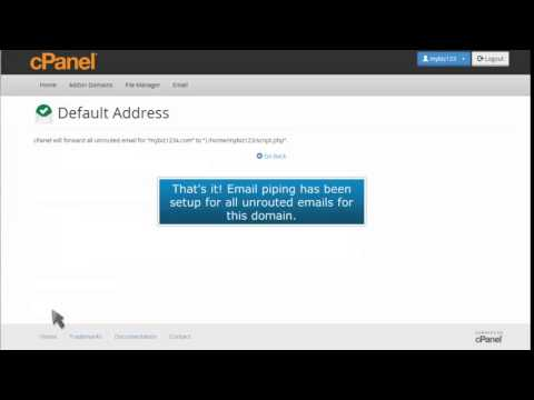 How to pipe unrouted emails to a specific script in cPanel