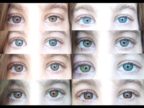 Color Contacts: All 12 Freshlooks Color Contact Lenses
