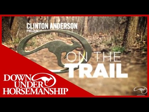 Clinton Anderson: How to Correct a Horse That Jigs - Downunder Horsemanship