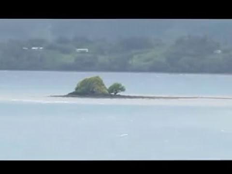 Turtle Island - Fiji