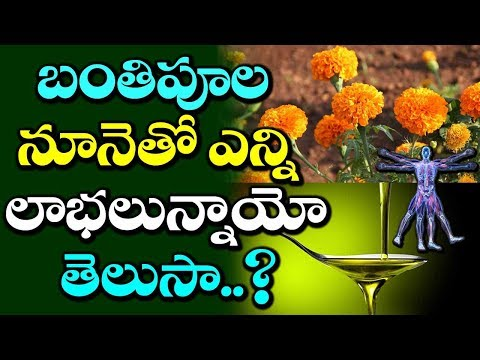 Health Benefits Of Marigold Flower Oil | Uses Of Marigold Oil | Marigold Remedies | VTube Telugu
