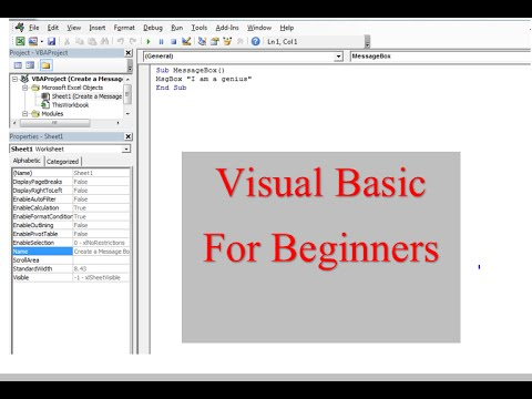 Visual Basic for Learners 1. Some basic code and commands