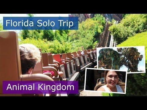 Day 5 | Animal Kingdom and first time in Pandora | Walt Disney World solo trip | Florida 2017