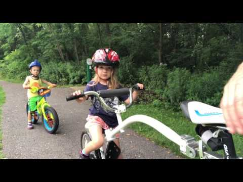Wee ride copilot and lil bubba fat tire bike