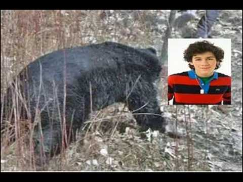 NICK JONAS ATTACKED BY BEAR!?!?