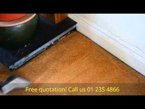 Pollen Stain Removal on domestic carpet by Chem2clean