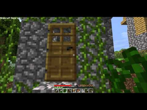 minecraft vines grow on doors