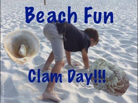 Ocean Clam Adventure