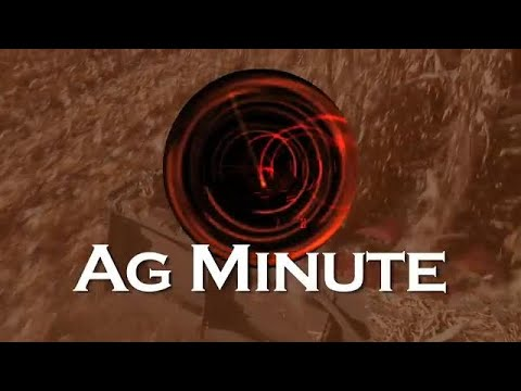 Ag Minute #898 Overwatering Your Lawn (Air Date 5-6-18)