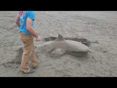 Sand sculpture time lapse. Instagram @coastalsafariadventures