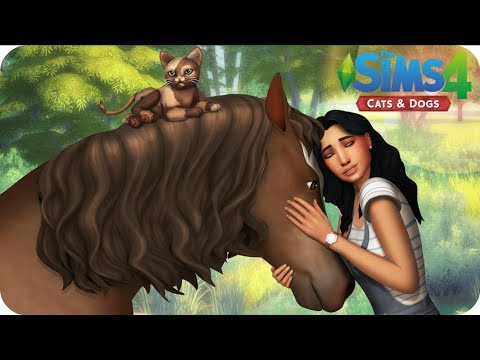 ANIMAL SHELTER | Sims 4 Cats And Dogs Letsplay | EP 7 - SQUIRREL REVENGE