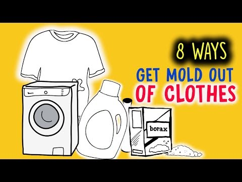 There Are 8 Easy Ways To Get Mold Out of Clothes