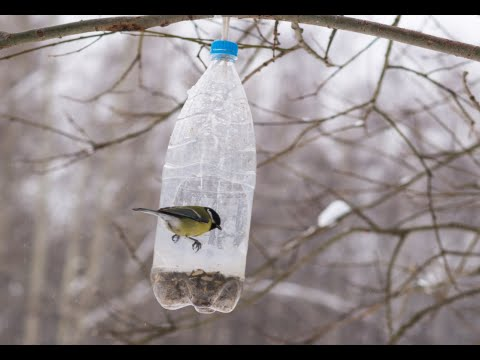 How to Make Bird Feeders Out of Plastic Bottles