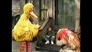 Classic Sesame Street - What Goes Where