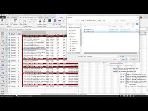 SAP MSP Schedule Management