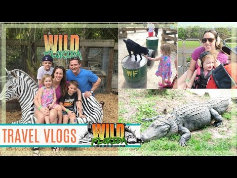 Travel Vlogs   Wild Florida Attraction 🐊 *AWESOME DAY!*