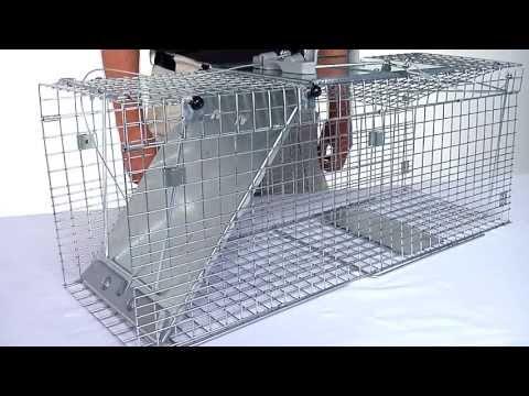 Havahart® Easy Set® Collapsible 1-Door Trap Models #1090 & #1092
