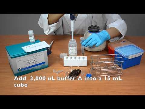 Agitest™ Food Allergen Rapid Test -Lab Kit (Gluten)