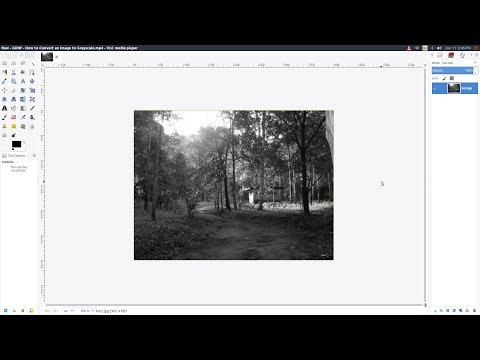 GIMP: How to Convert an Image to Grayscale