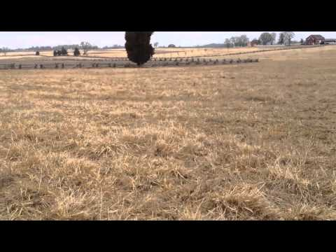 Barksdale's Brigade at Gettysburg ( Parts 1-6)