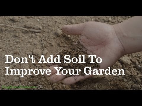 Don't Add Soil To Improve Your Garden
