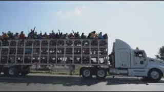 Download Thousands of migrants hitch a ride to the US border Video