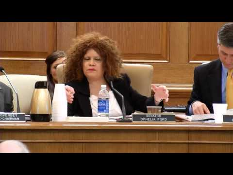 RAW NEWS: Senator Ford Lightens the Mood at the Committee Meeting