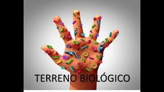 Entenda a teoria do Terreno Biológico