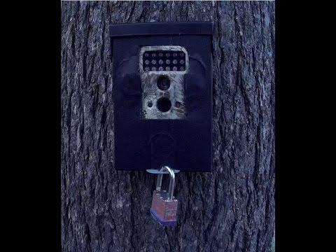 Trail Camera Lock Box