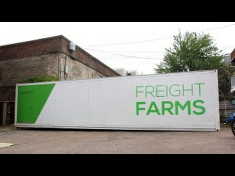 Grow 800 heads of lettuce a week in this box